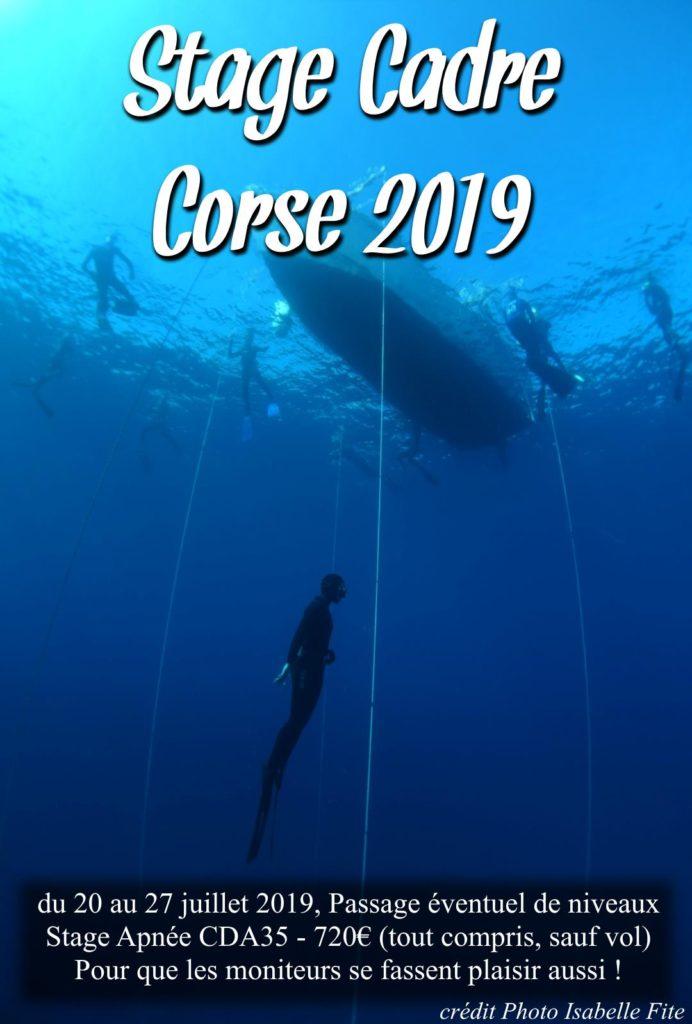 Affiche du stage Cadre 2019